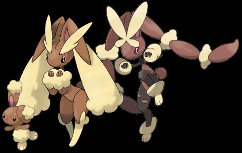 Normal Type Reviews Buneary Lopunny Pokémon Crossroads