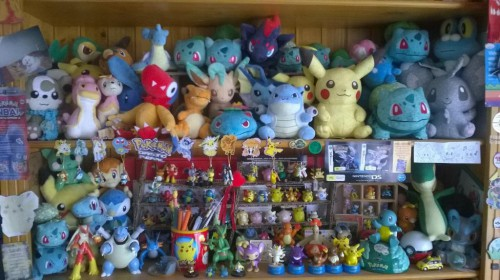 Pokemon Trainer Sarah's Plushie Collection
