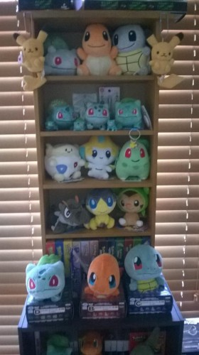 Pokemon Trainer Sarah's Auxiliary Collection